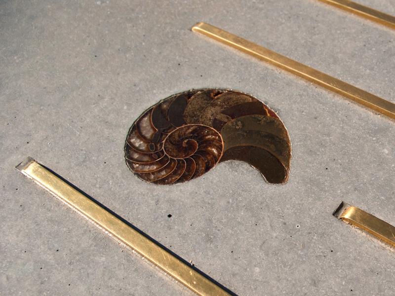 Embedding an Ammonite - Step 6 | Concrete Exchange