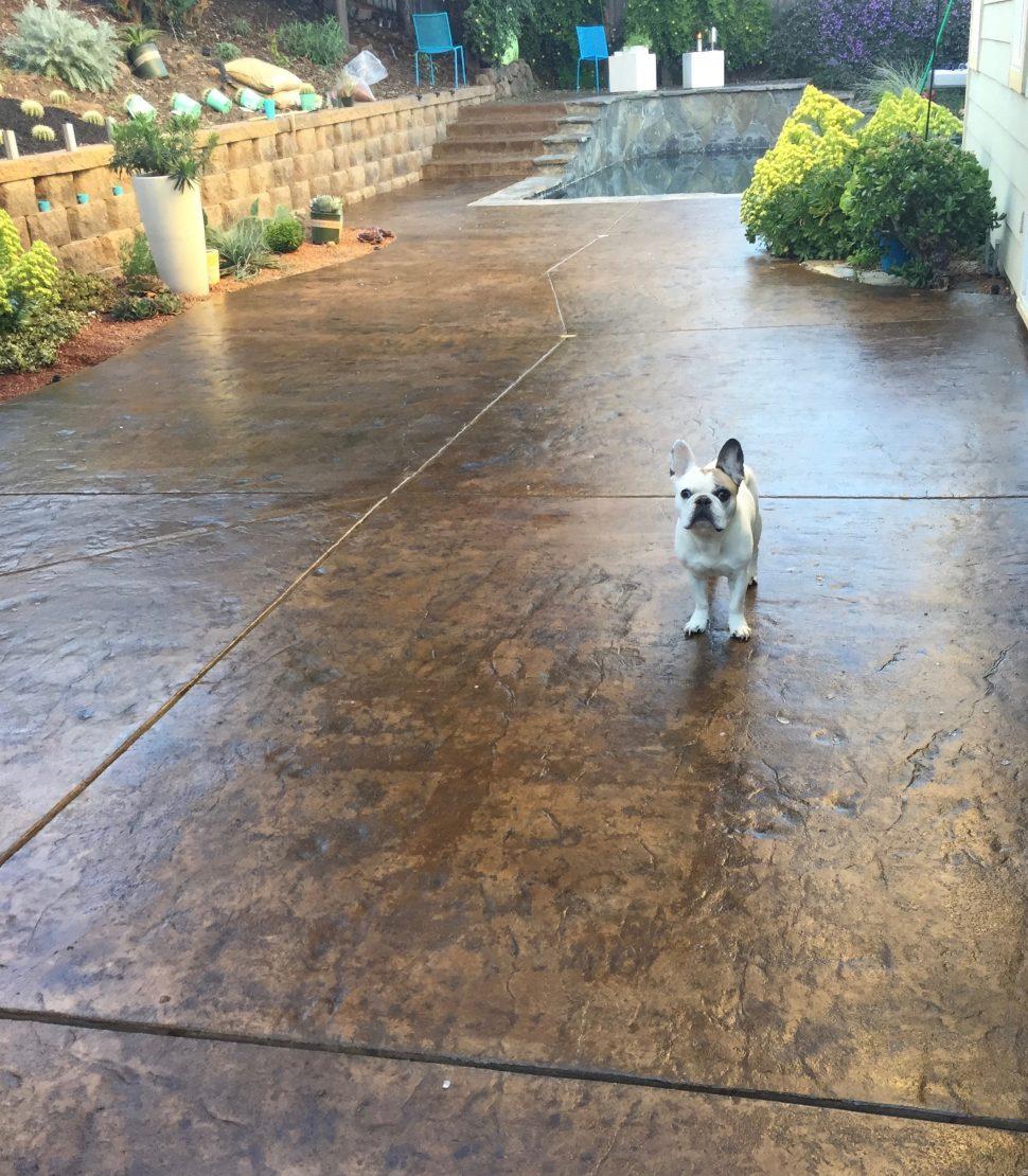 Concrete Outdoor Kitchen Countertops: Concrete-patio-article_10